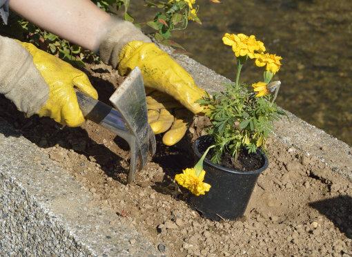 Importancia del tipo de suelo