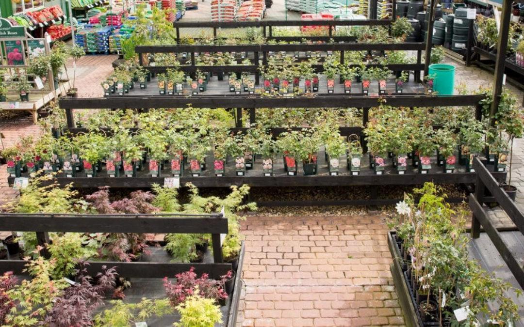 Instrucciones para el Cuidado de las Plantas