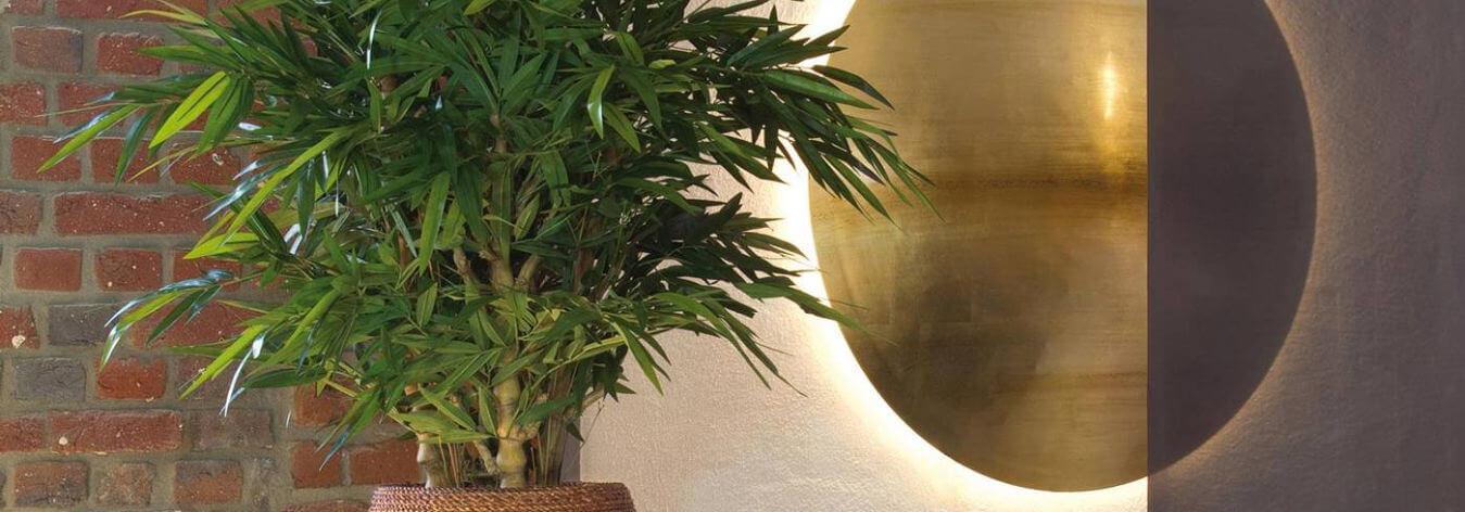 ¿Plantas naturales o plantas artificiales?