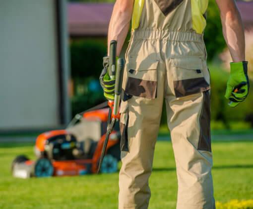 Servicio profesional jardinería