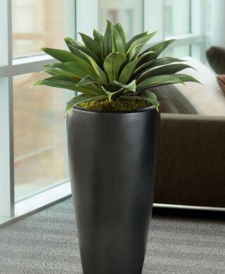 Ventajas plantas artificiales